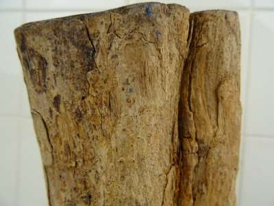 Markant Afrikaans hardhouten beeld