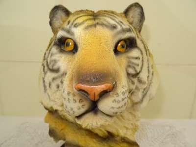 Fraai beeld van een tijger
